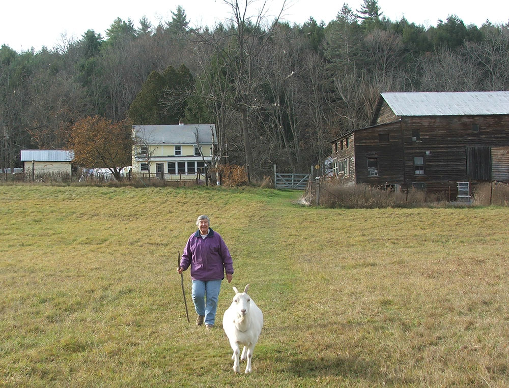 Barbara Yeaman's Property