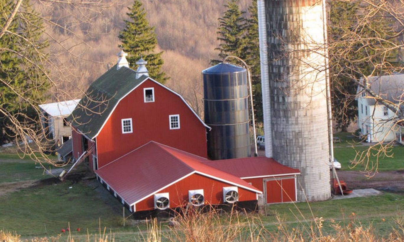 Channery Hill Farm