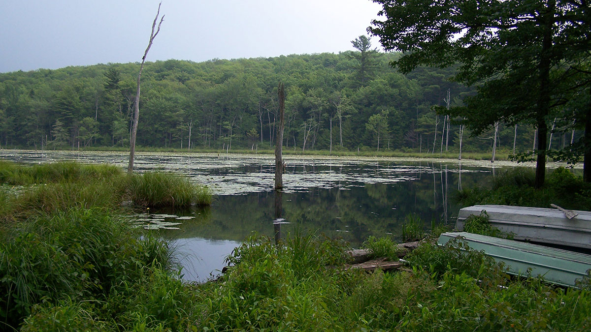 Pike Natural Gas >> Protecting Mink Pond Club for the Future - Delaware ...