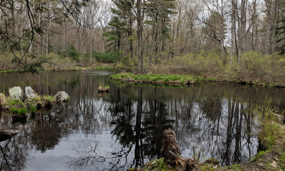 3,683 Acres Permanently Protected in Pike County, PA