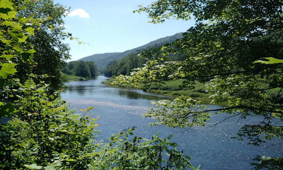 "Delaware River Named ""River of the Year"""