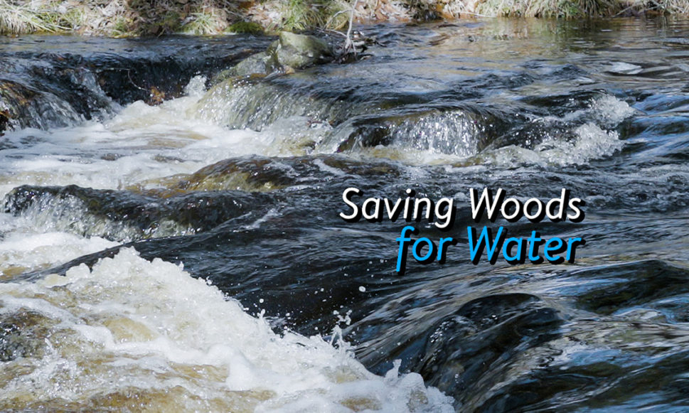 Saving Woods for Water: A Short Film