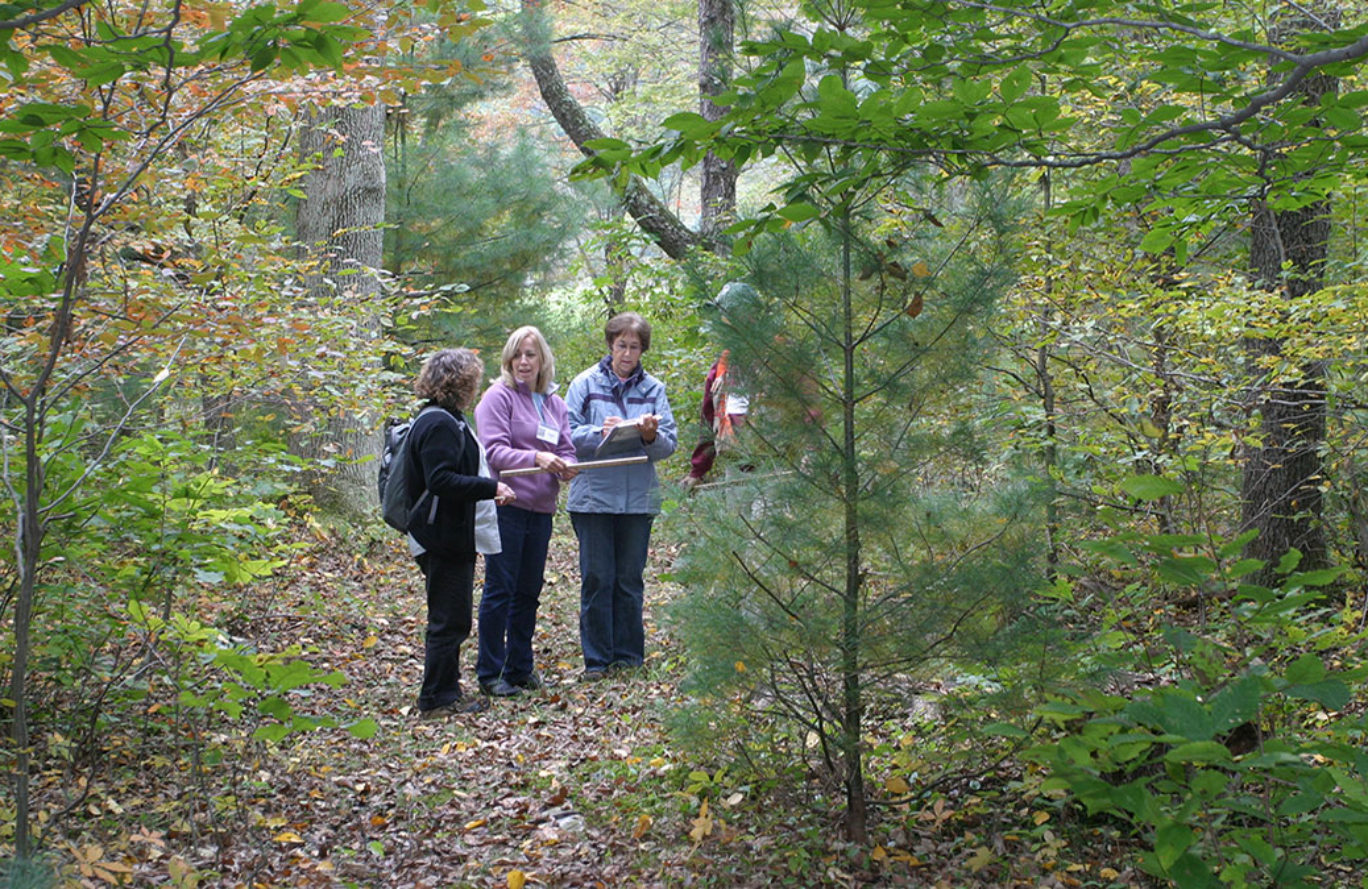 Women and Their Woods Educational Retreat – Wait List Only