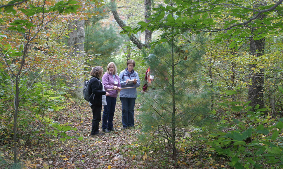 Protecting a Piece of Paradise: Love of Place Sparks Stewardship for Women Woodland Owners