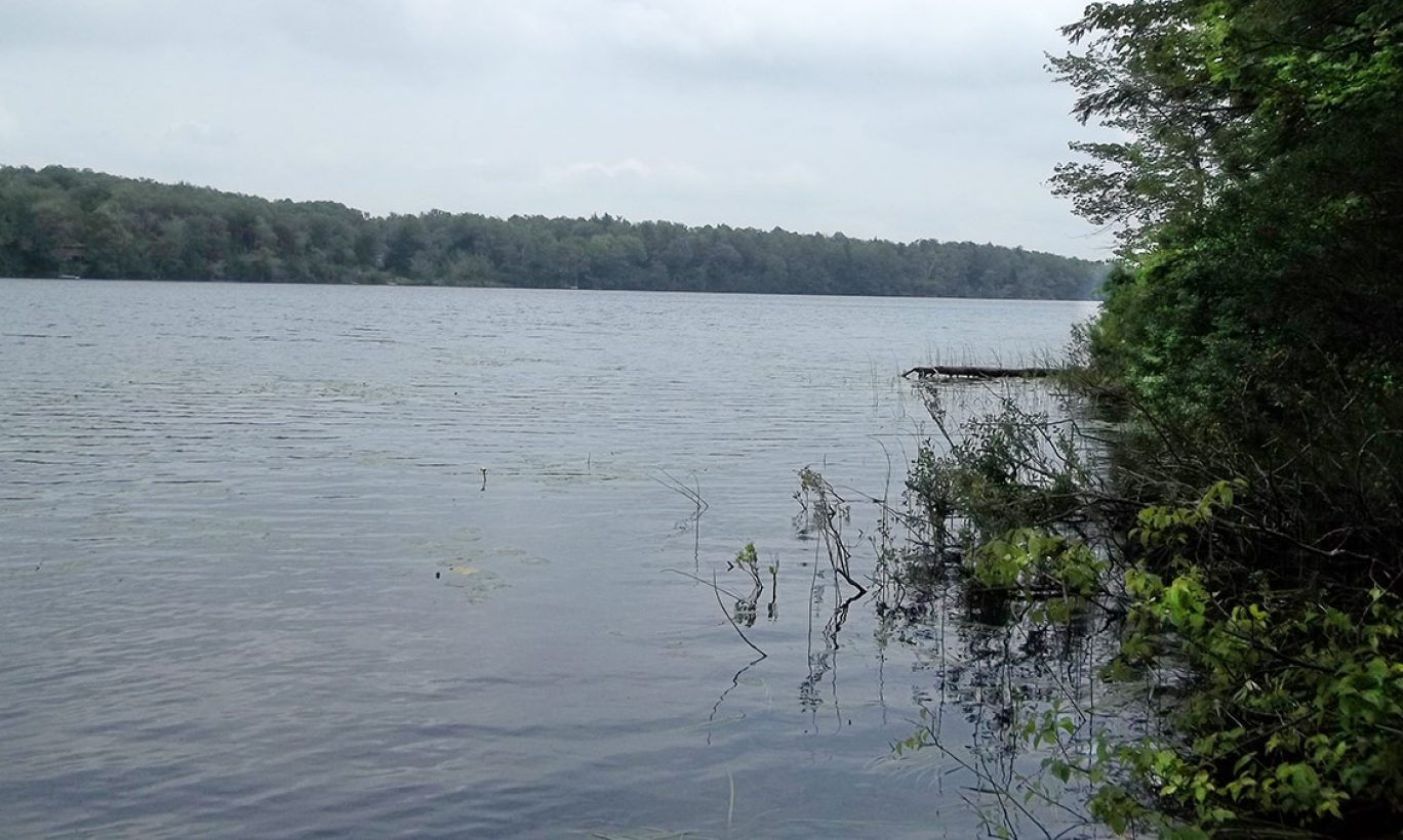 Protecting Bone Pond from Subdivision