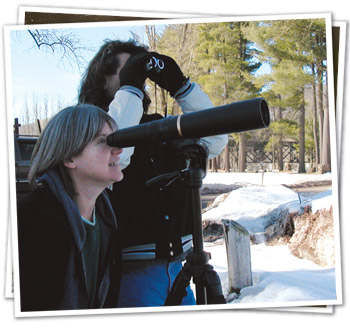 Eagle Watching on Your Own - Delaware Highlands Conservancy