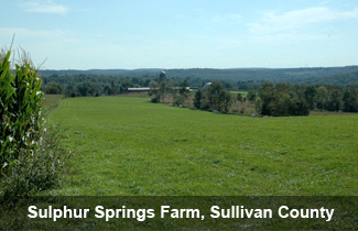 farm Sullivan County