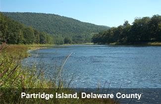 island Delaware County