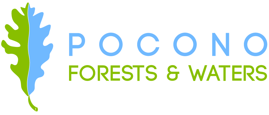 Pocono Forests and Waters