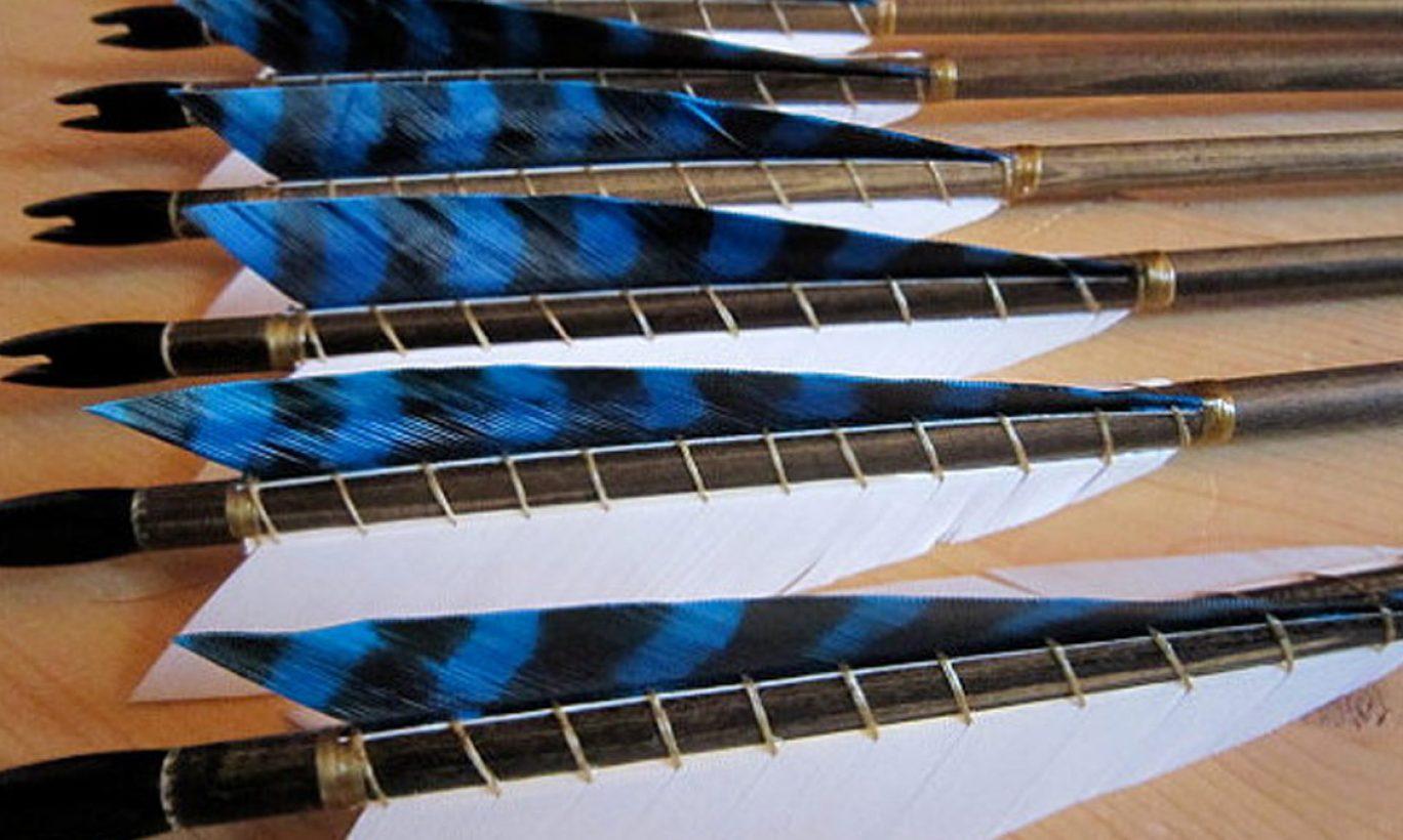 Bold Archery Design