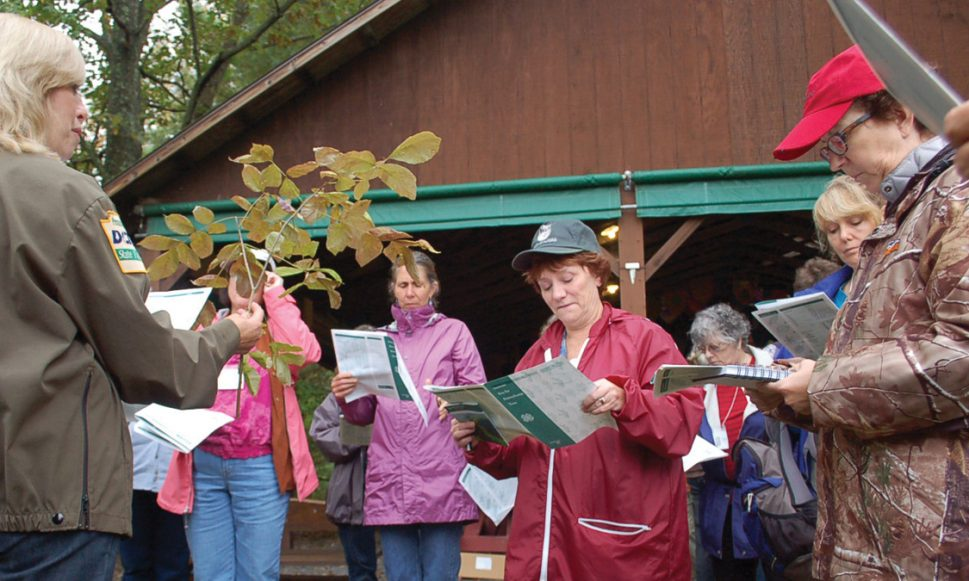 Women & Their Woods Program Educates and Motivates Woodland Owners